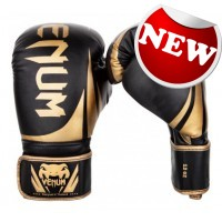 "Venum - ""Challenger 2.0"" Boxing Gloves - Black/Gold"